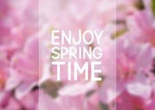 De achtergrond van het de lentenetwerk Stock Foto