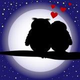 De achtergrond van het de uilensilhouet van de liefde Stock Foto