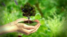 De Achtergrond van het Ecooverleg stock videobeelden
