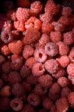 De achtergrond van het frambozenfruit Royalty-vrije Stock Fotografie