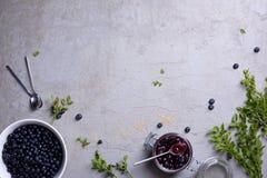 De achtergrond van het fruit Rijpe en sappige verse geplukte bosbessen hoogste mening, exemplaarruimte Stock Afbeelding