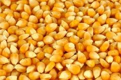 De achtergrond van het graan Royalty-vrije Stock Foto's