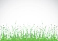 De achtergrond van het gras vector illustratie