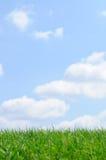 De Achtergrond van het gras en van de Hemel Royalty-vrije Stock Afbeeldingen