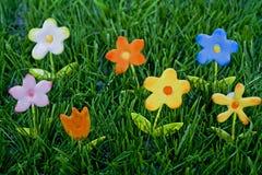 De achtergrond van het gras met bloemen stock fotografie