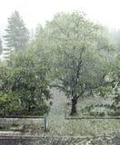 De Achtergrond van het hagelonweer Stock Afbeeldingen