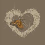 De Achtergrond van het Hart van de vlinder Stock Foto's
