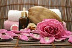 De achtergrond van het kuuroord met roze en kokosnoot Stock Foto