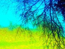 De Achtergrond van het landschap Stock Afbeeldingen