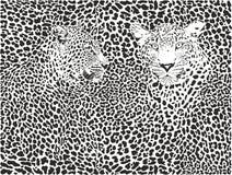De achtergrond van het luipaardpatroon Stock Afbeelding