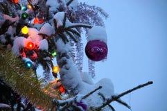 De achtergrond van het nieuwjaar of van Kerstmis Verfraaide Kerstboomstandi Stock Foto