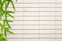 De achtergrond van het rijstpapier met bamboebladeren Stock Foto