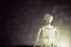De achtergrond van het skelet Stock Foto's
