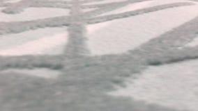 De Achtergrond van het tapijt stock footage
