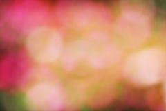 De achtergrond van het tuinonduidelijke beeld Stock Afbeeldingen