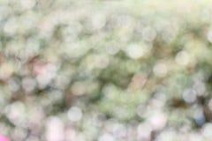 De achtergrond van het tuinonduidelijke beeld Royalty-vrije Stock Afbeeldingen