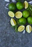 De achtergrond van het voedsel Lijn, rozemarijn, munt en ijs Royalty-vrije Stock Afbeeldingen