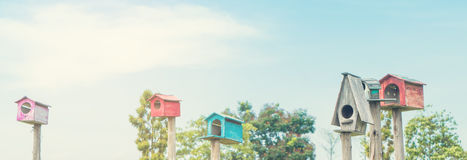 De achtergrond van het vogelhuis met exemplaarruimte van blauwe hemel royalty-vrije stock fotografie