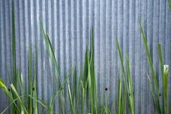 De achtergrond van het zink. Royalty-vrije Stock Afbeeldingen