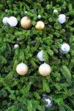 De achtergrond van kerstboomdecoratie op Reusachtige Kerstboom Stock Afbeeldingen