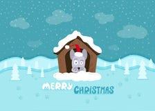 De achtergrond van Kerstmis Leuke hond met een santahoed Royalty-vrije Stock Fotografie