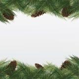De achtergrond van Kerstmis met Kerstmisboom Vectorkader met gree Stock Afbeeldingen