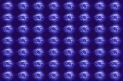 De achtergrond van Kerstmis Witte rendieren op blauwe achtergrond Royalty-vrije Stock Foto