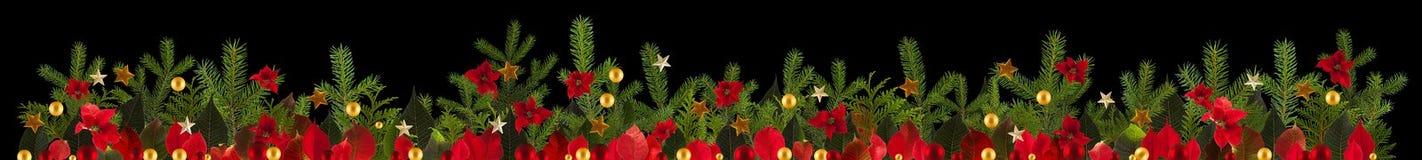 De achtergrond van de Kerstmisdecoratie met gouden sterren en poinsetta Stock Afbeelding