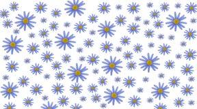 De achtergrond van de lente in orde gemaakte echte bloem Kleurrijke achtergrond stock fotografie