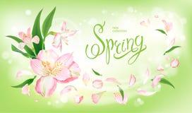 De achtergrond van de de lenteinzameling royalty-vrije illustratie
