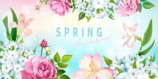 De achtergrond van de de lenteinzameling stock illustratie