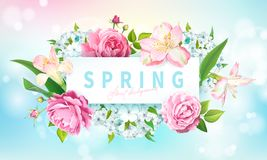 De achtergrond van de de lenteinzameling vector illustratie