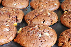 De achtergrond van muffins Stock Afbeeldingen