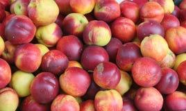 De achtergrond van nectarines Stock Foto's