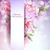 De achtergrond van pioenenbloemen. Stock Foto