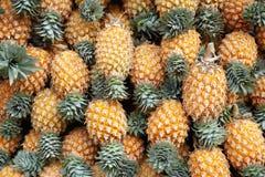 De achtergrond van rijpe ananassen stock afbeeldingen