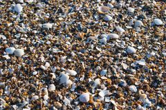 De achtergrond van strandstenen Stock Afbeelding