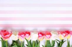 De achtergrond van vakantiebloemen De dag van de moeder `s Royalty-vrije Stock Afbeeldingen