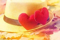 De achtergrond van de valentijnskaartendag Hart twee in bladeren Concept liefde Stock Foto's