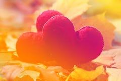 De achtergrond van de valentijnskaartendag Hart twee in bladeren Concept liefde Royalty-vrije Stock Afbeelding