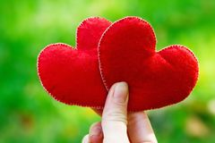 De achtergrond van de valentijnskaartendag Hart twee in bladeren Concept liefde Royalty-vrije Stock Afbeeldingen