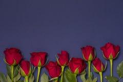 De achtergrond van de valentijnskaartendag, naadloze marineblauwe achtergrond met rode roze grens, de vrije ruimte van de exempla stock afbeeldingen