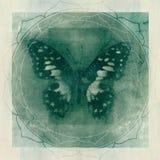 De Achtergrond van Yantra van de vlinderyoga royalty-vrije illustratie