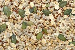 De achtergrond van zaden en van graangewassen Royalty-vrije Stock Foto's