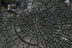 De achtergrond, zwarte, raad, brandwond, brandde, houtskool, steenkool, kleur, barst, dark, brand, brandhout, grunge, hitte, hori royalty-vrije stock afbeelding
