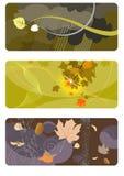 De achtergronden set_2 van de herfst Stock Afbeelding