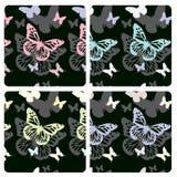 De achtergronden van de vlinder Stock Foto's