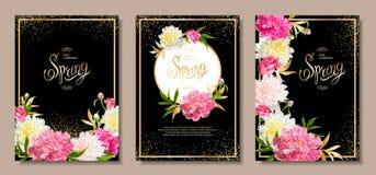 De achtergronden van de de lenteinzameling met peones Stock Foto's