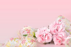 De achtergronden van de moedersdag, roze anjers op de roze achtergrond stock foto