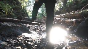 De achtermening van kerelkampeerauto die door kleine stroomrivier lopen, follen boomboomstammen en rotsen, langzame motie lengte  stock video